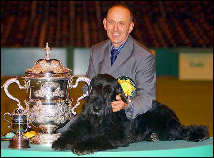Giant Schnauzer Champion Philip with Crufts Trophy