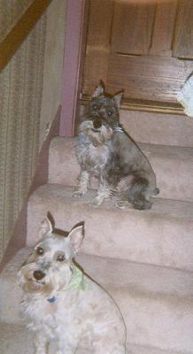 Walter & Mr. Beasley